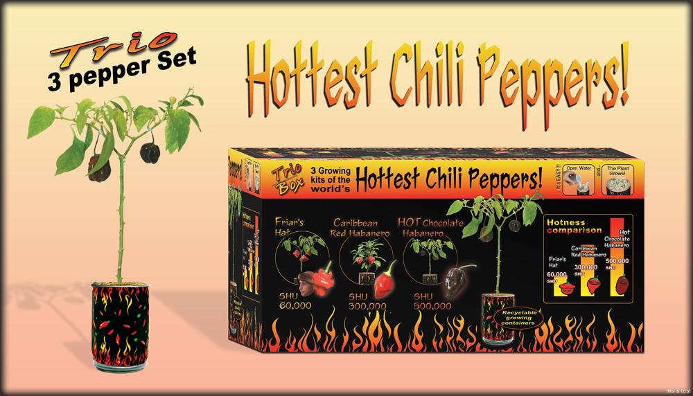 habanero chocolate peppers