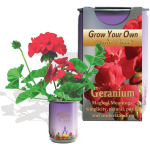 Geranium Growing kit