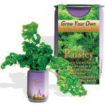Parsley Growing kit