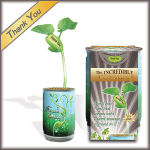 """Thank You"" Magic Plant"