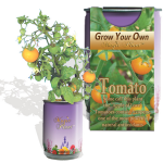 Spearmint Growing kit