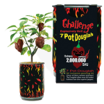 7 Pot Douglah | 7 Pod Douglah | Chocolate 7 Pod
