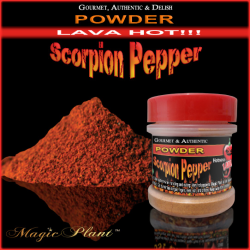 Trinidad Scorpion Pepper Powder - 1/2oz
