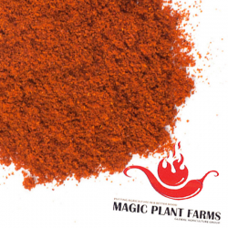 Chile Piquin Powder