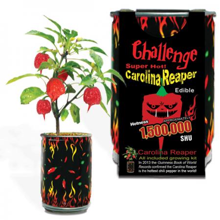 Carolina Reaper Growing Kit