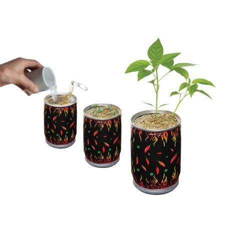 wiri wiri Plant