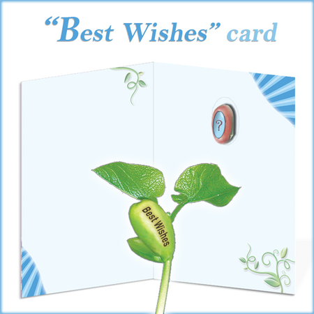 Uniqe Greeting Card