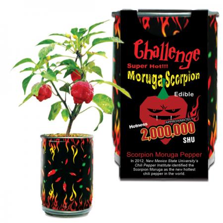 Moruga Scorpion Pepper Growing Kit