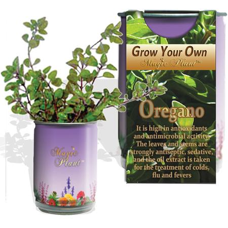 Oregano Growing kit