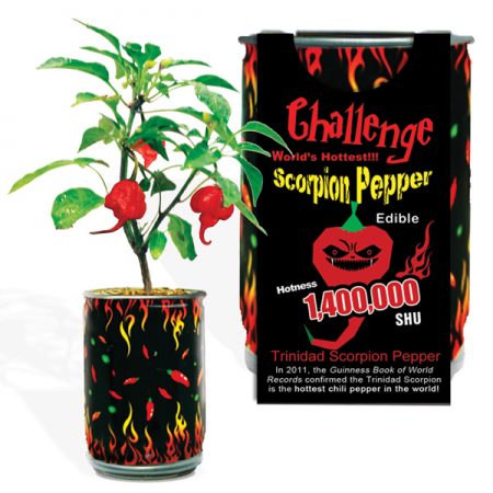 Trinidad Scorpion Growing Kits