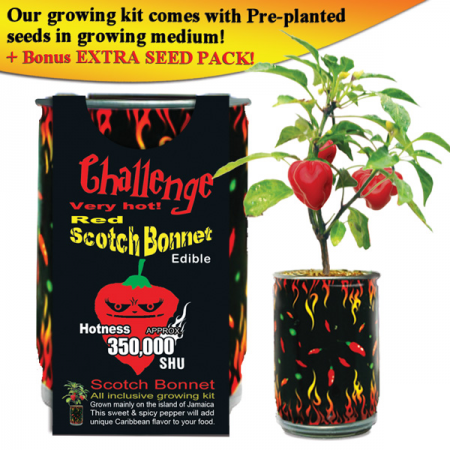 Red Scotch Bonnet