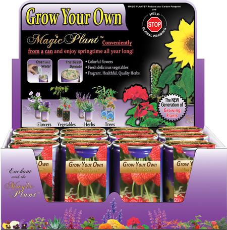 Strawberry Growing kit