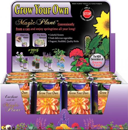 Dahlia Growing kit