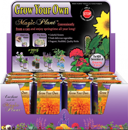 Marigold Growing kit