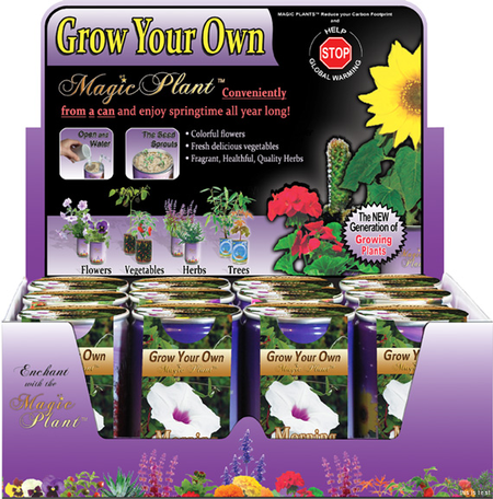 Morning Glory (Petunia) Growing kit