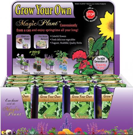 Sage Growing- kit