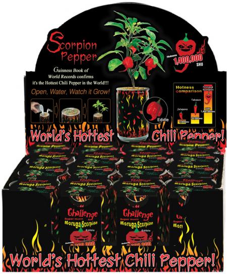 Moruga Scorpion Pepper Plant